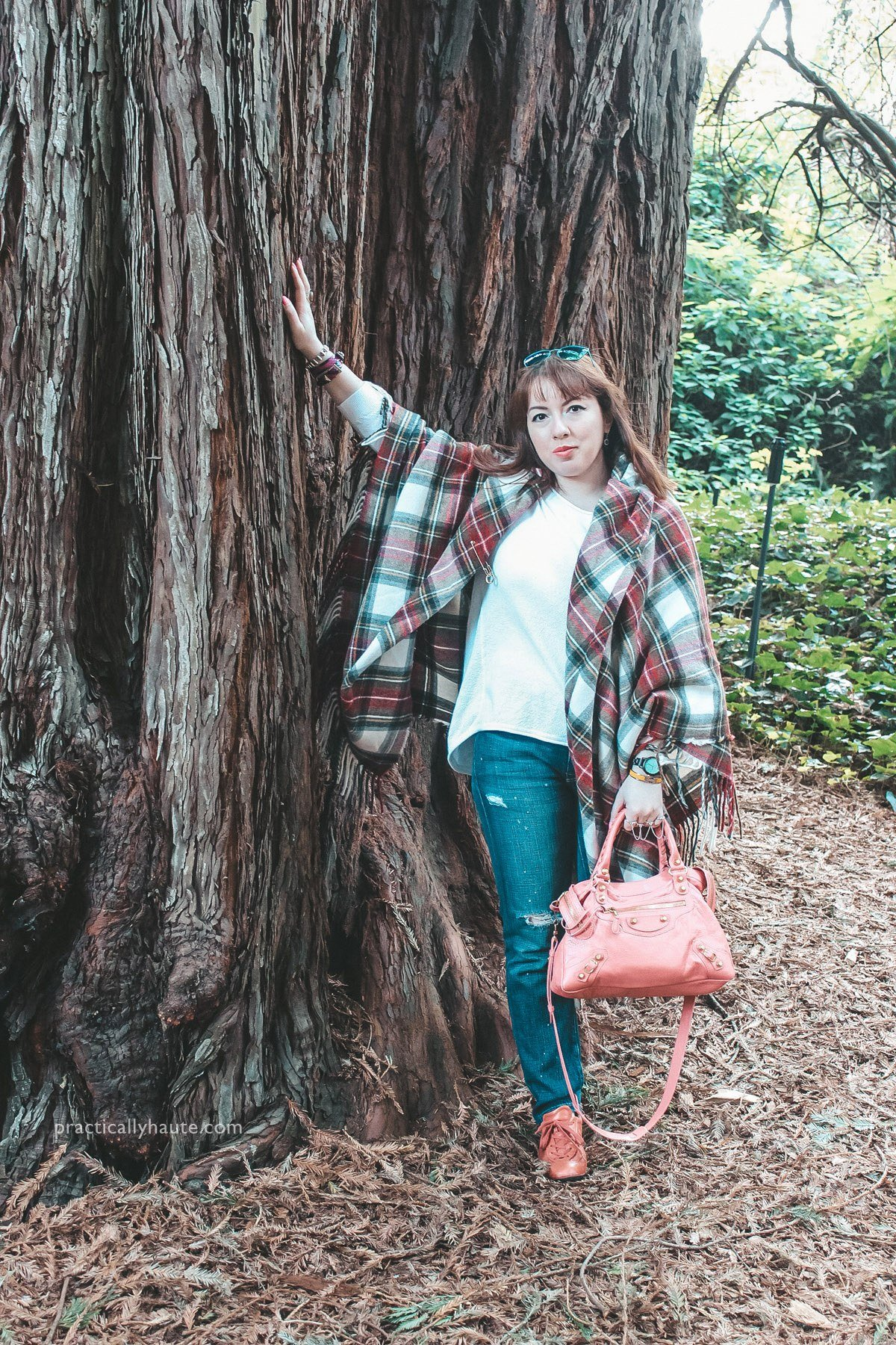 Fashion blogger wearing plaid outfit look featuring Vivienne Westwood tartan cape, blue jeans, white seater, and pink Balenciaga city bag. Standing in front of ancient Redwood tree in California.